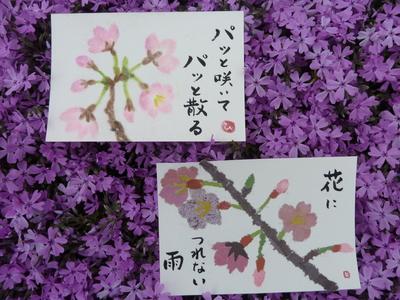 桜のパステル途ちぎり絵b画.JPG