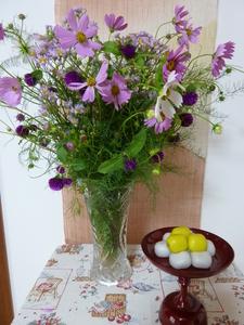 団子と花.JPG