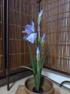 菖蒲の生け花.JPG